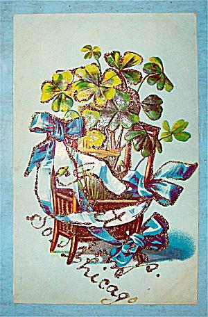 Four Leaf Clover Plant Postcard (Image1)