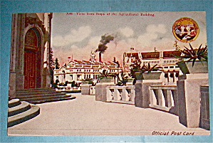 Vista From Steps Of The Agricultural Building Postcard