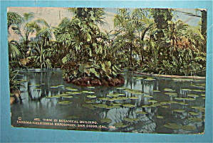 View In Botanical Building Postcard-Pan California Expo (Image1)