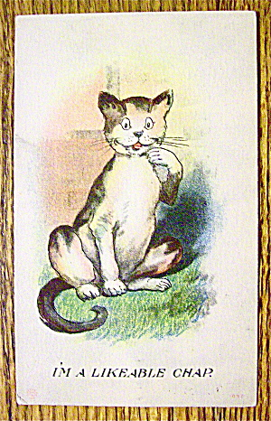 A Cat Smiling With Their Paw By Their Face Postcard (Image1)