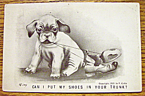 Puppy Chewing On A Pair Of Shoes Postcard