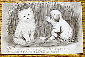 Dog Staring At A Cat While The Cat Looks Away Postcard