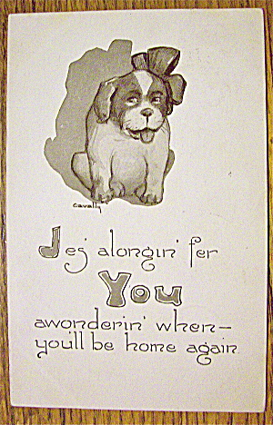 Puppy Sitting With A Bow On Its Head Postcard
