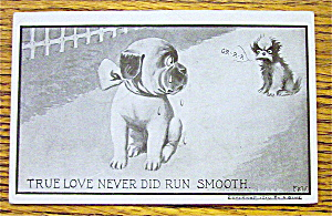 Puppy With A Bow Crying Postcard (Image1)