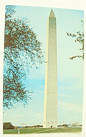 The Washington Monument Postcard (Image1)