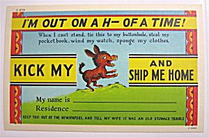 A Donkey Smiling Postcard (Image1)