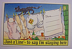 Cat Walking On Clothes Line Postcard (Image1)