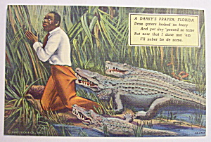 Alligator Biting At Black Man Pants Postcard