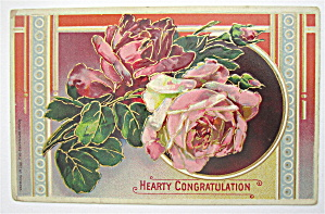 Pink Roses And Green Leaves Postcard (Image1)