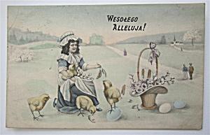 Woman Feeding Birds Postcard (Image1)