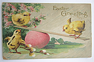 Baby Chicks Playing On See Saw Postcard (Image1)