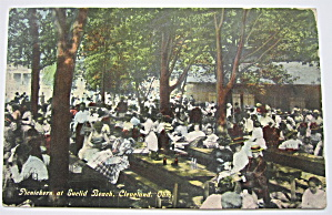 Picnickers at Euclid Beach, Cleveland, Ohio Postcard (Image1)