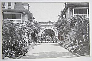 House Of David Postcard (Image1)