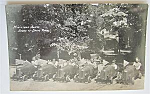 Miniature Auros At House Of David Park Postcard (Image1)