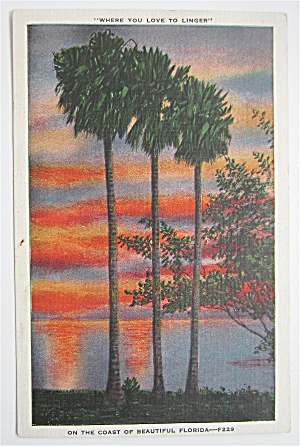 On The Coast Of Beautiful Florida Postcard (Image1)