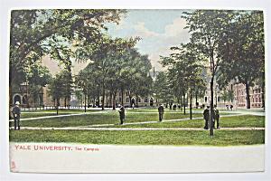 Yale University Postcard (The Campus) (Image1)