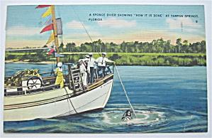 Sponge Diver, Tarpon Springs, Florida Postcard (Image1)