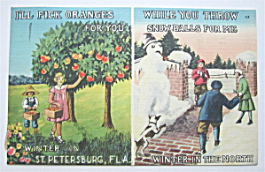 Winter In Florida & The North Postcard  (Image1)