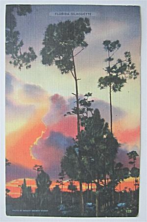 Florida Silhouette Postcard (Image1)