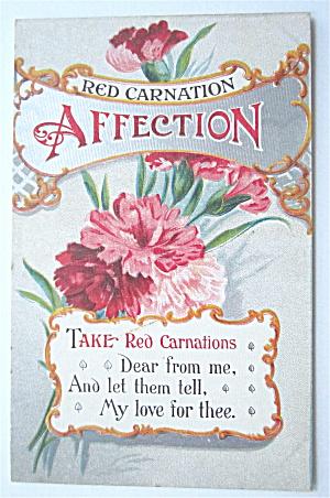 Red Carnation Postcard (Affection) (Image1)