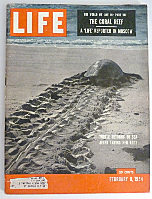 Life Magazine-february 8, 1954-the Coral Reef