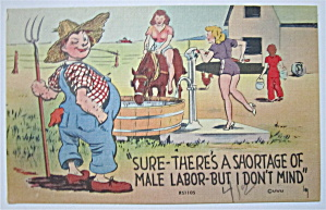 Man Watching Women Work Postcard