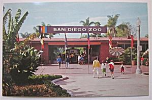 San Diego Zoo, San Diego, California Postcard  (Image1)