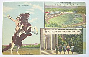 Ellensburg, Wasington Rodeo & College Postcard  (Image1)