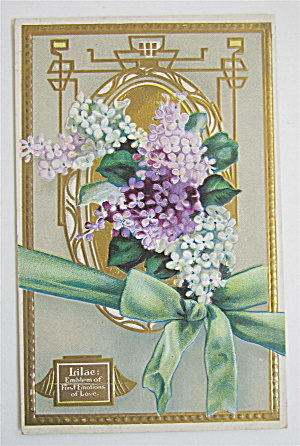 Purple And White Lilac Flowers Postcard  (Image1)