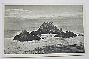 Seal Rocks From Cliff House, San Francisco, CA Postcard (Image1)