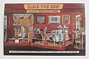 Elsie & Her Twins In Person Postcard