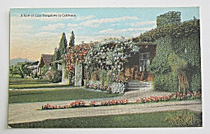 Row Of Cozy Bungalows In California Postcard  (Image1)