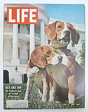 Life Magazine-june 19, 1964-president's Dogs
