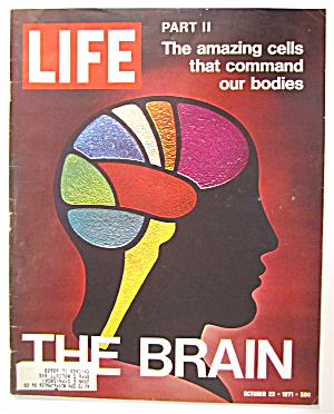 Life Magazine October 22, 1971 The Brain