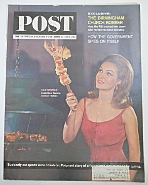 Saturday Evening Post Magazine June 6, 1964 J Newmar (Image1)