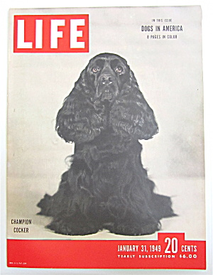 Life Magazine-january 31, 1949-dogs In America