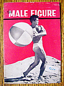 The Male Figure-1956-bill Melby (Gay Interest)