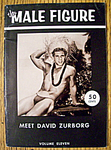 The Male Figure-1958-david Zurborg (Gay Interest)