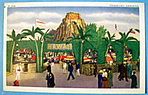 1933 Century Of Progress, Hawaiian Gardens Postcard (Image1)