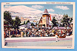 Postcard Of Black Forest Postcard (Chicago World Fair) (Image1)