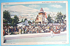 Black Forest Postcard (Chicago World's Fair) (Image1)
