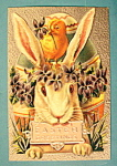 Click here to enlarge image and see more about item 10020: Easter Greetings Postcard with Rabbit Holding a Sign