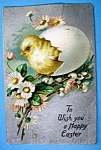 Click here to enlarge image and see more about item 10024: Wish You a Happy Easter Postcard w/Chick (Raphael Tuck)