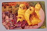 Click to view larger image of Easter Greetings Postcard w/4 Chicks in Hatched Egg (Image1)