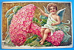 Click here to enlarge image and see more about item 10123: To My Valentine Postcard with Angel Sitting on Flowers