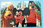 Click here to enlarge image and see more about item 10211: Magic Kingdom Postcard