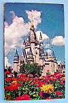 Click here to enlarge image and see more about item 10212: Cinderella's Castle Postcard