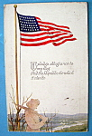 Click here to enlarge image and see more about item 10316: American Flag Postcard