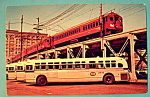 Click here to enlarge image and see more about item 10495: Pacific Electric Red Cars & Buses Postcard