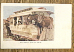 Cherrelyn Horse Car Postcard-Vivid Picture of Horse Car